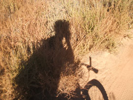 self-portrait while mountain biking up to Simi Peak
