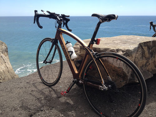 one year in love (my Renovo R4)
