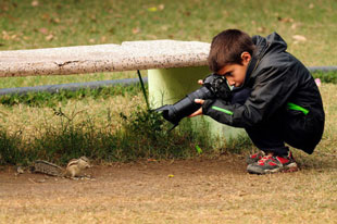 shooting squirrels (with a camera)