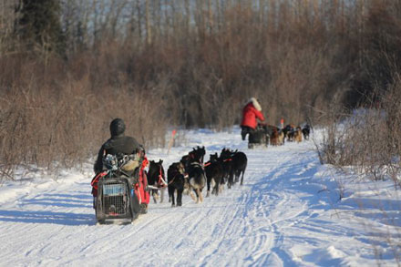 mushing into Nikolai... perfect racing conditions